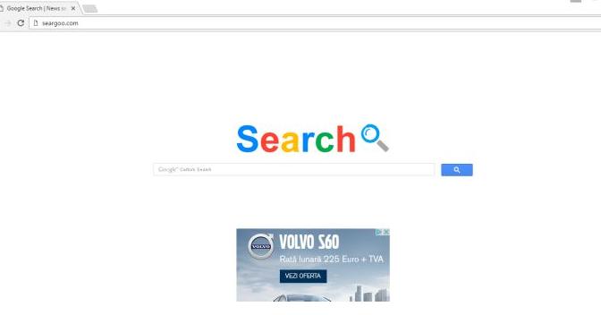 searchgo